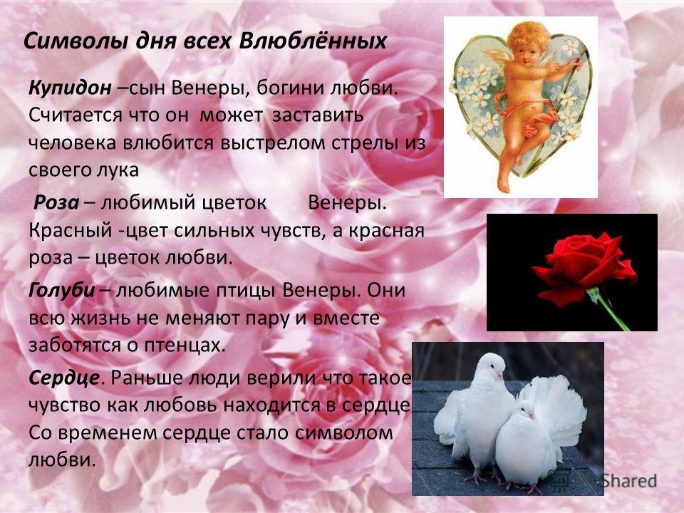 Символы дня всех Влюблённых Купидон –сын Венеры, богини любви. Считается что он может заставить человека влюбится выстрелом стрелы из своего лука Роза – любимый цветок Венеры. Красный -цвет сильных чувств, а красная роза – цветок любви. Голуби – люби