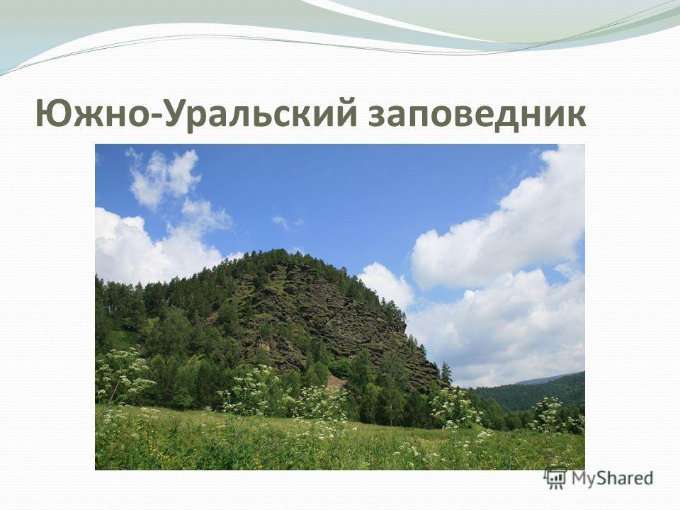 Южно-Уральский заповедник
