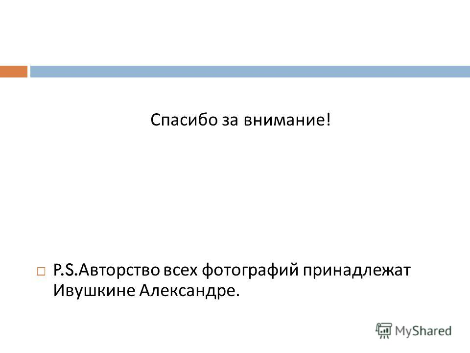 Спасибо за внимание ! P.S. Авторство всех фотографий принадлежат Ивушкине Александре.