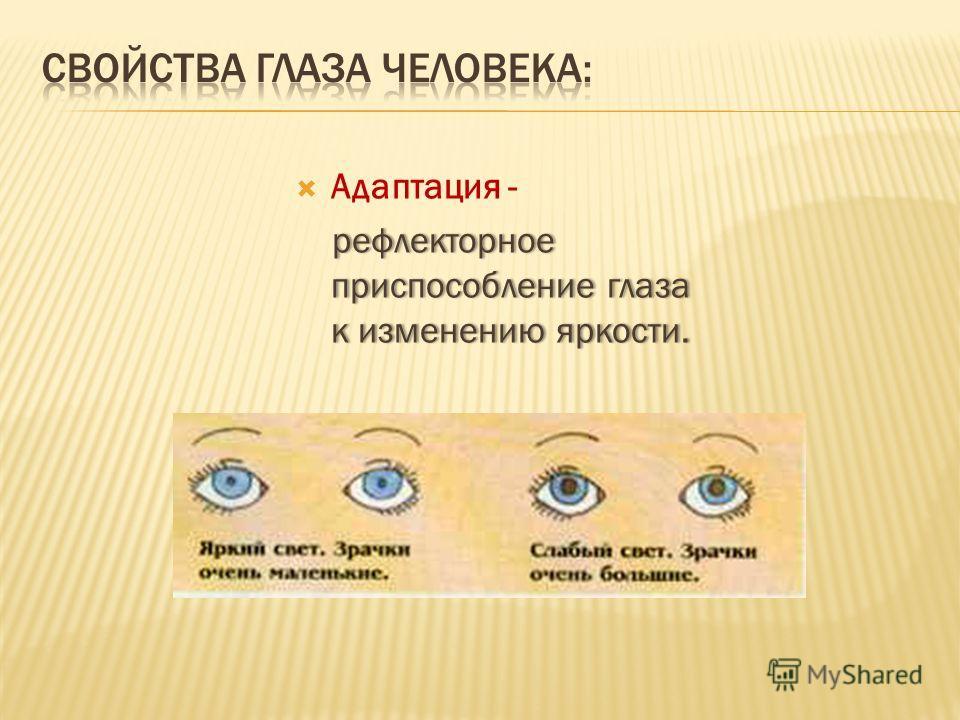 Адаптация - рефлекторное приспособление глаза к изменению яркости. рефлекторное приспособление глаза к изменению яркости.