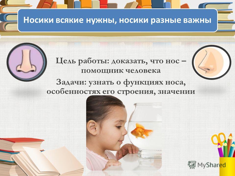 Носики всякие нужны, носики разные важны Цель работы: доказать, что нос – помощник человека Задачи: узнать о функциях носа, особенностях его строения, значении