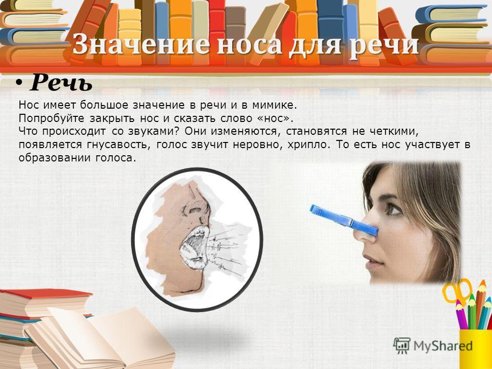 Нос имеет большое значение в речи и в мимике. Попробуйте закрыть нос и сказать слово «нос». Что происходит со звуками? Они изменяются, становятся не четкими, появляется гнусавость, голос звучит неровно, хрипло. То есть нос участвует в образовании гол
