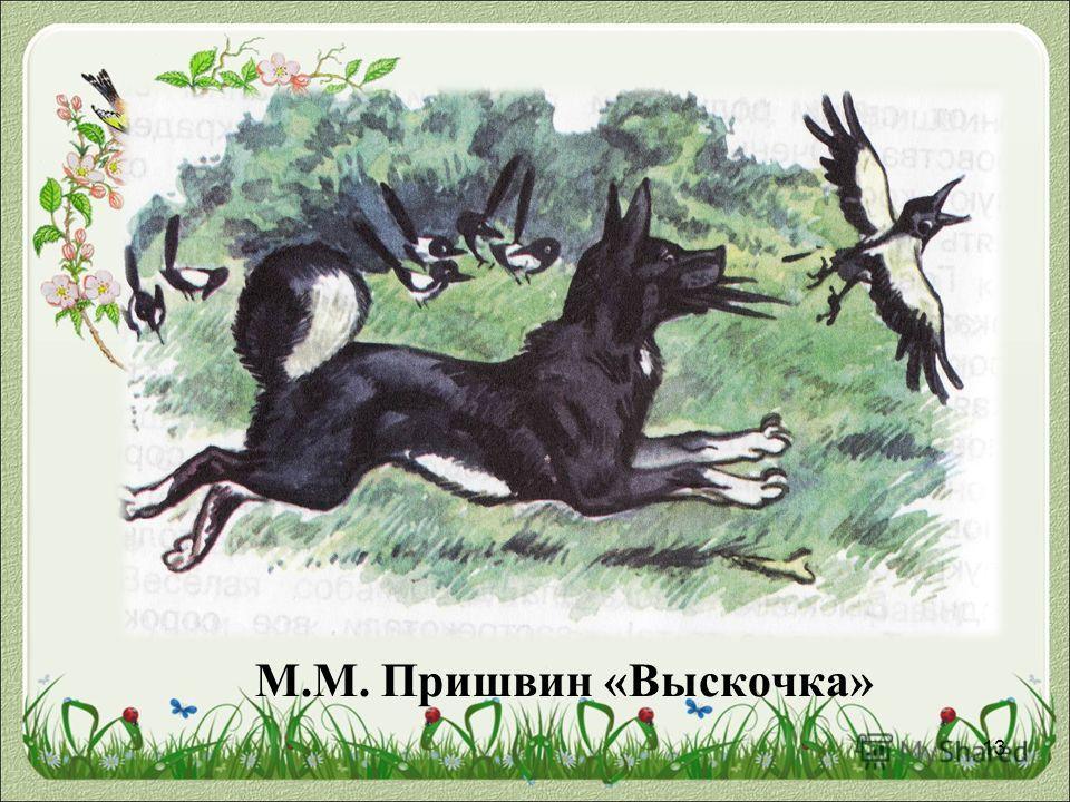 М.М. Пришвин «Выскочка» 13