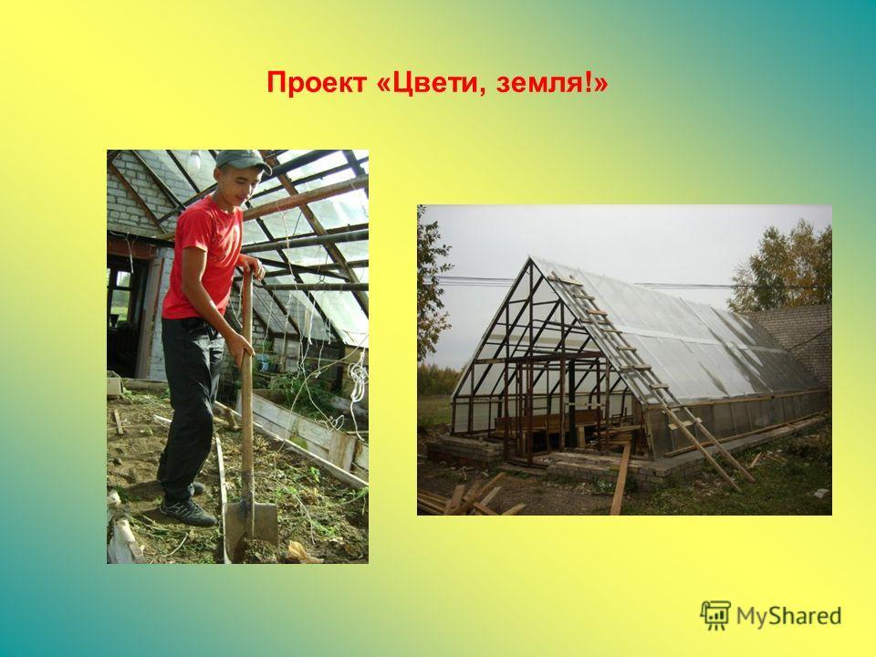 Проект «Цвети, земля!»