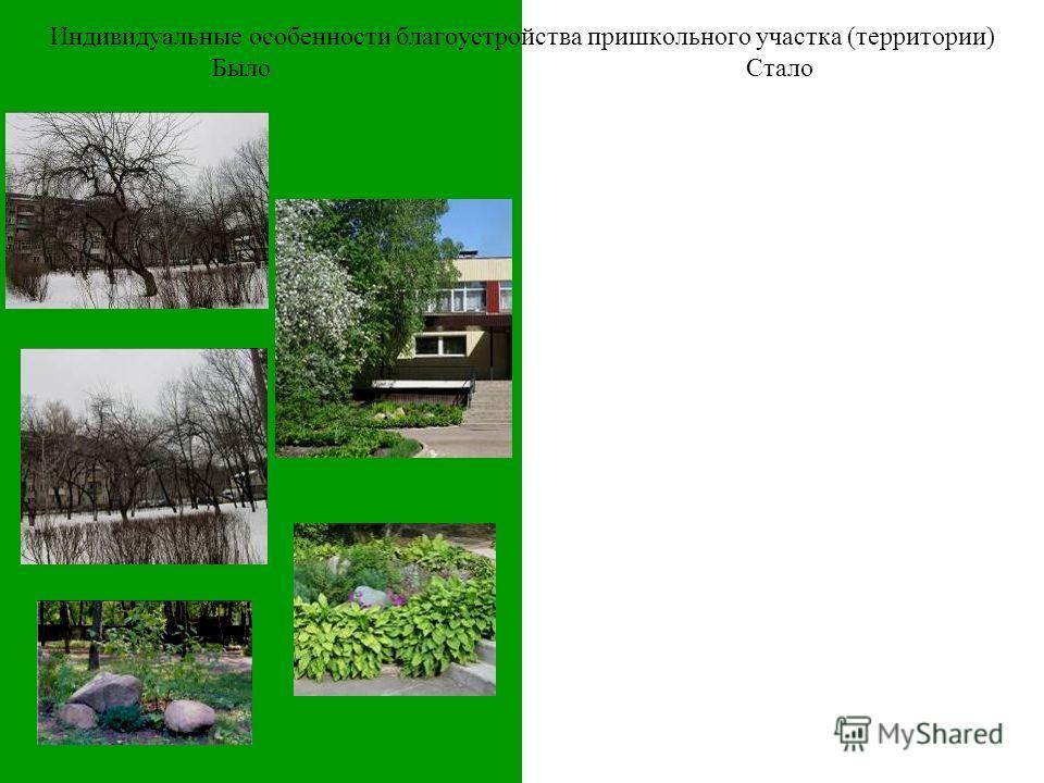 Было Индивидуальные особенности благоустройства пришкольного участка (территории) Стало