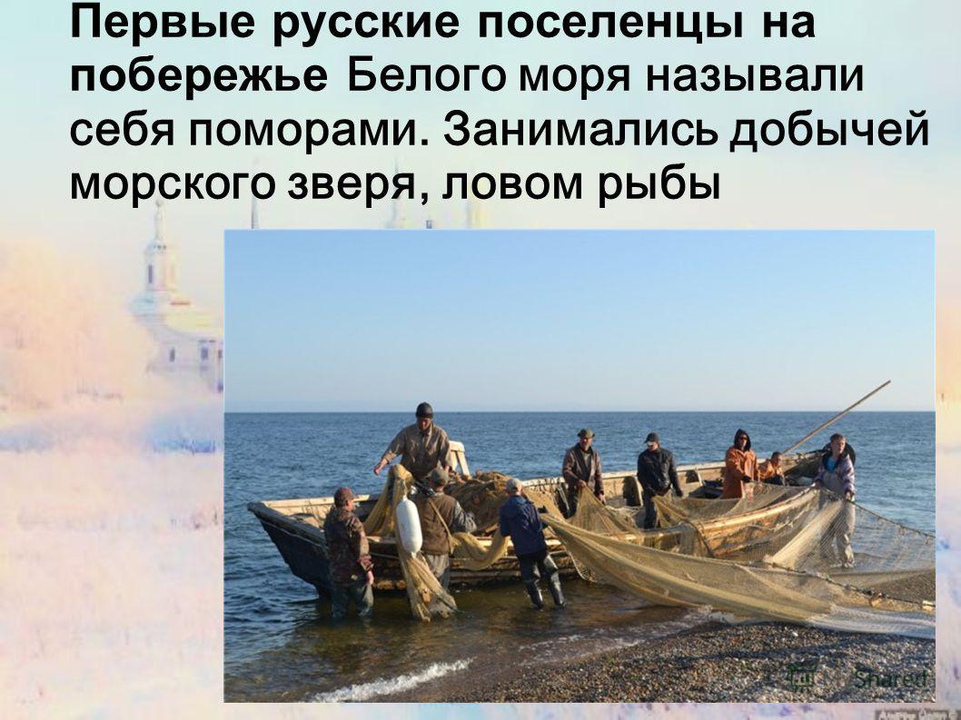 Первые русские поселенцы на побережье Белого моря называли себя поморами. Занимались добычей морского зверя, ловом рыбы