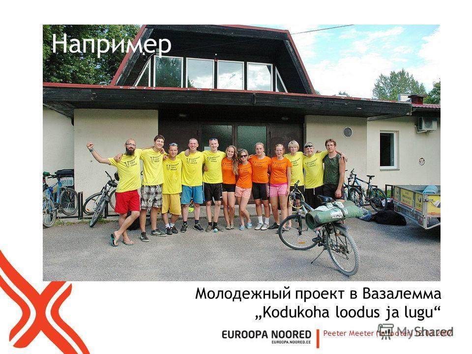 Например Молодежный проект в Вазалемма Kodukoha loodus ja lugu Peeter Meeter (in footer) 12.03.2007