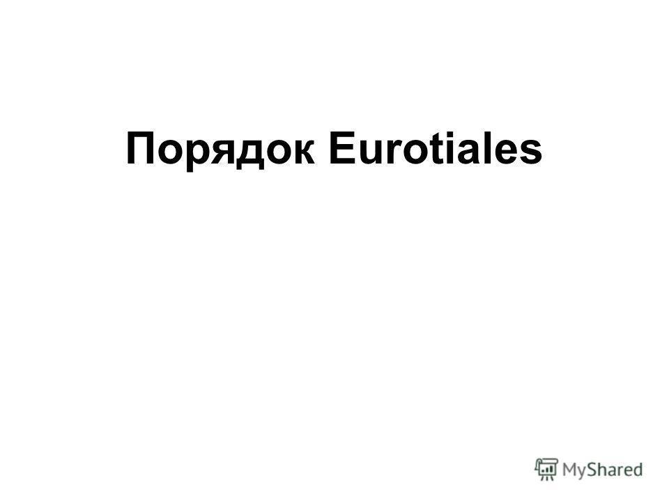 Порядок Eurotiales