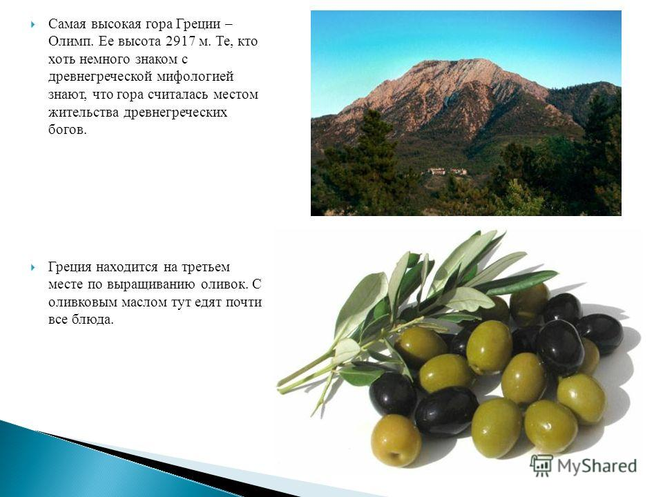 Самая высокая гора Греции – Олимп. Ее высота 2917 м. Те, кто хоть немного знаком с древнегреческой мифологией знают, что гора считалась местом жительства древнегреческих богов. Греция находится на третьем месте по выращиванию оливок. С оливковым масл