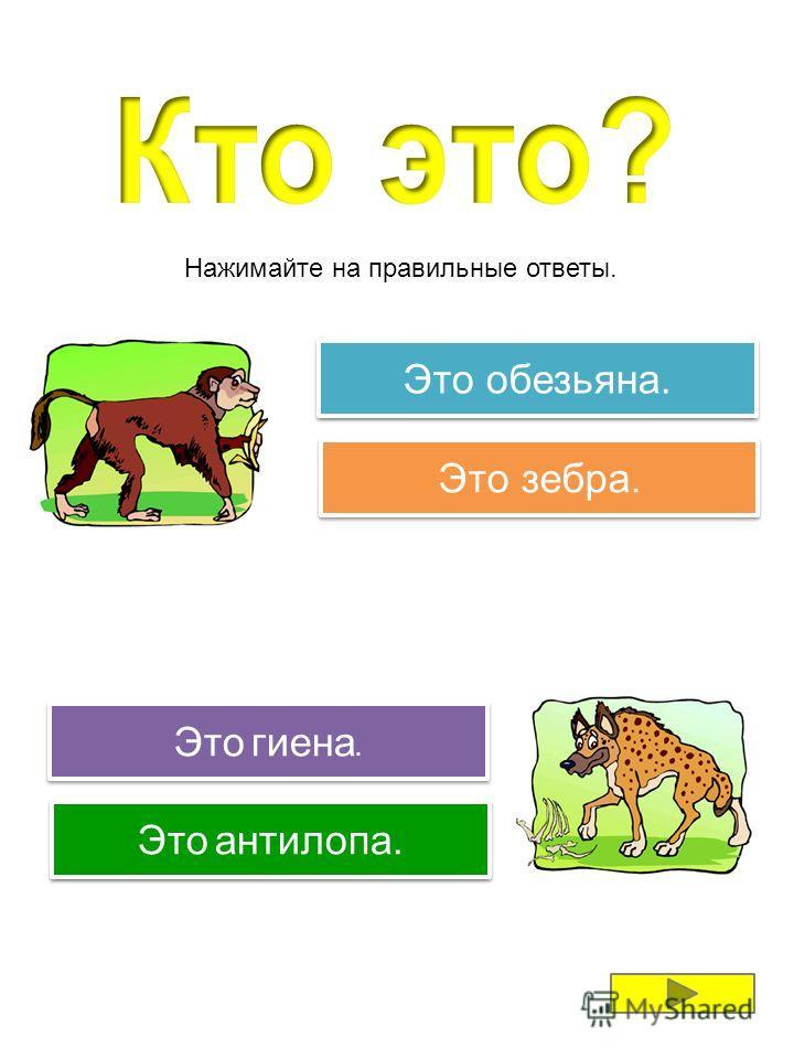 обезьяна бегемот жираф гиена антилопа зебра Нажимайте на картинки, чтобы послушать названия животных.