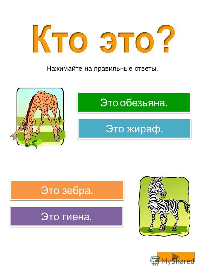 Правильно! Это обезьяна. Попробуйте еще раз! Это гиена. Это зебра. Попробуйте еще раз! Это антилопа. Нажимайте на правильные ответы.