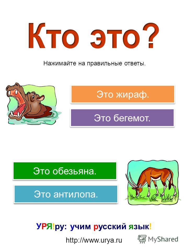 Попробуйте еще раз! Правильно! Попробуйте еще раз! Это гиена. Это зебра. Это обезьяна. Это жираф. Нажимайте на правильные ответы.