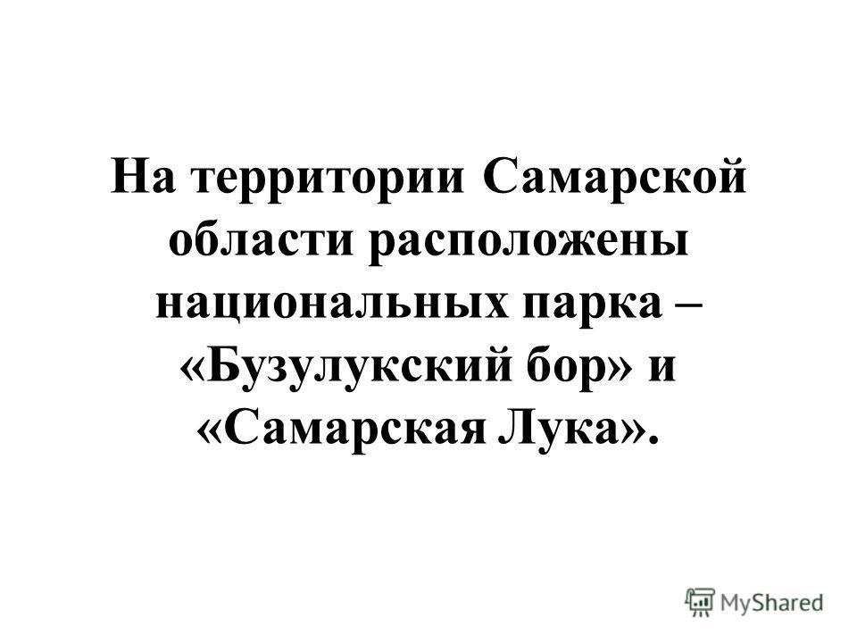На территории Самарской области расположены национальных парка – «Бузулукский бор» и «Самарская Лука».