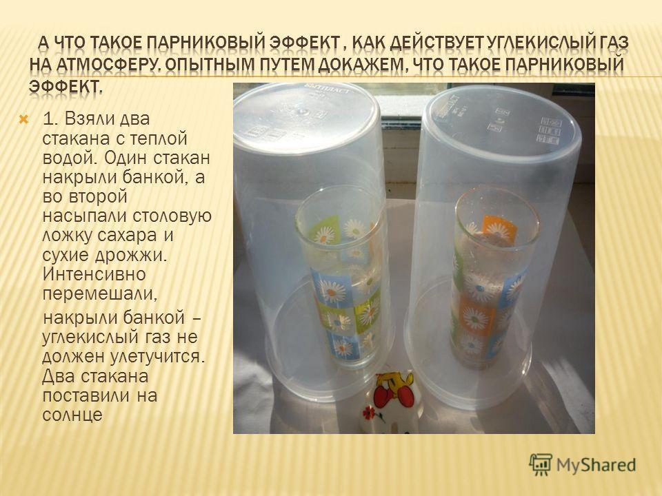 1. Взяли два стакана с теплой водой. Один стакан накрыли банкой, а во второй насыпали столовую ложку сахара и сухие дрожжи. Интенсивно перемешали, накрыли банкой – углекислый газ не должен улетучится. Два стакана поставили на солнце