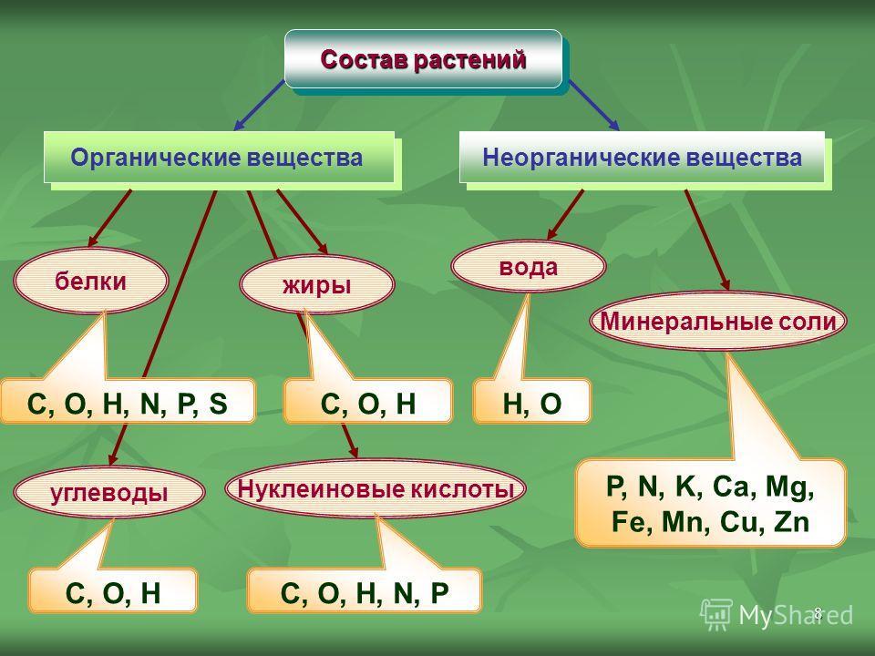 8 Состав растений Органические вещества Неорганические вещества белки жиры углеводы Нуклеиновые кислоты H, O P, N, K, Ca, Mg, Fe, Mn, Cu, Zn C, O, H, N, P, S C, O, H C, O, H, N, P Минеральные соли вода