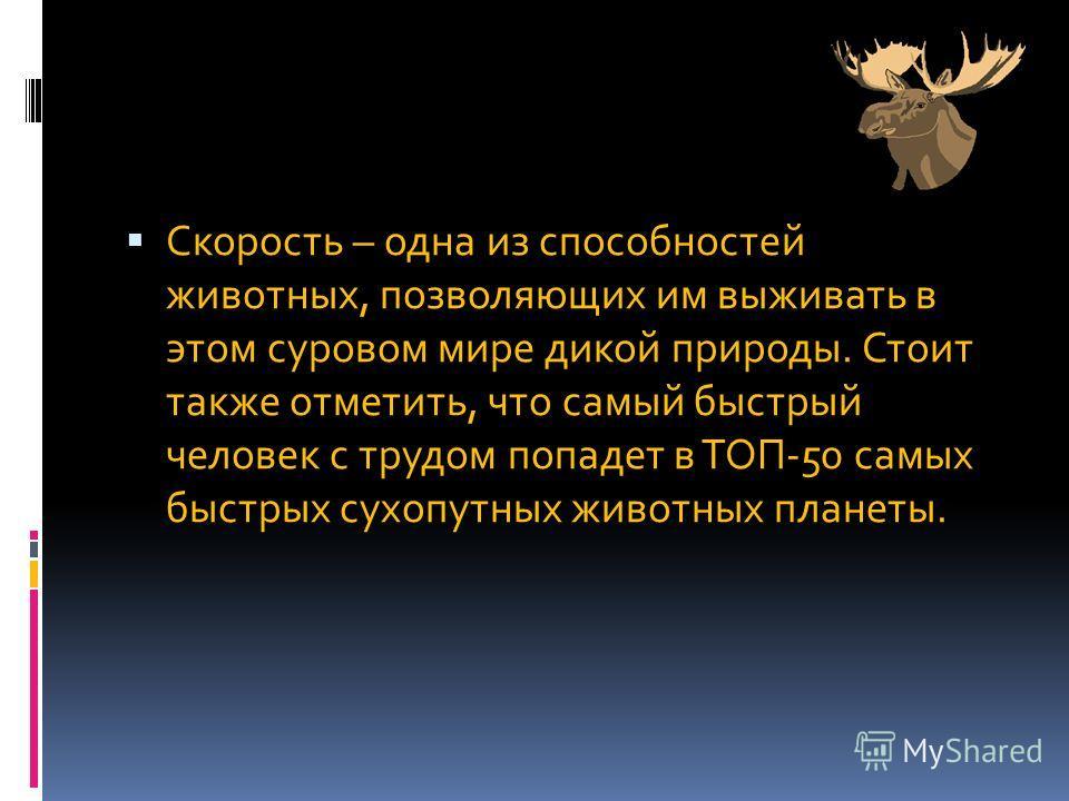 Скорость – одна из способностей животных, позволяющих им выживать в этом суровом мире дикой природы. Стоит также отметить, что самый быстрый человек с трудом попадет в ТОП-50 самых быстрых сухопутных животных планеты.