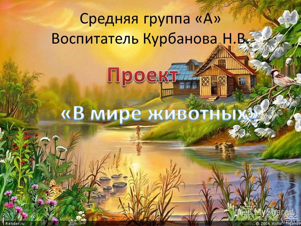 Средняя группа «А» Воспитатель Курбанова Н.В.