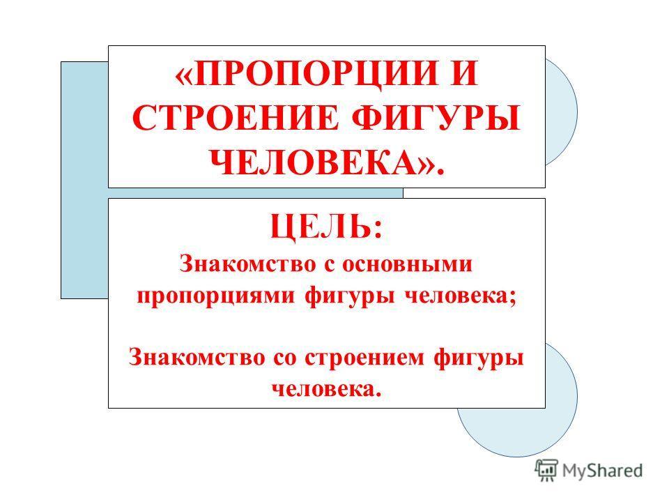 «ПРОПОРЦИИ И СТРОЕНИЕ ФИГУРЫ ЧЕЛОВЕКА».