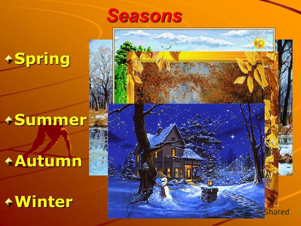 Seasons SpringSummerAutumnWinter