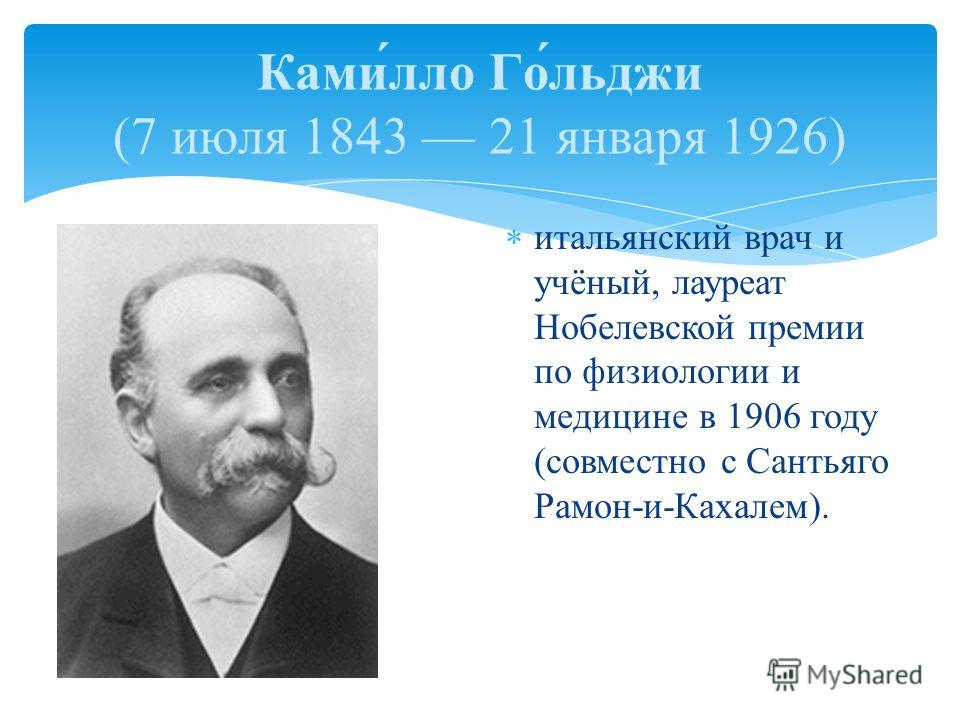 итальянский врач и учёный, лауреат Нобелевской премии по физиологии и медицине в 1906 году (совместно с Сантьяго Рамон-и-Кахалем). Ками́лло Го́льджи (7 июля 1843 21 января 1926)