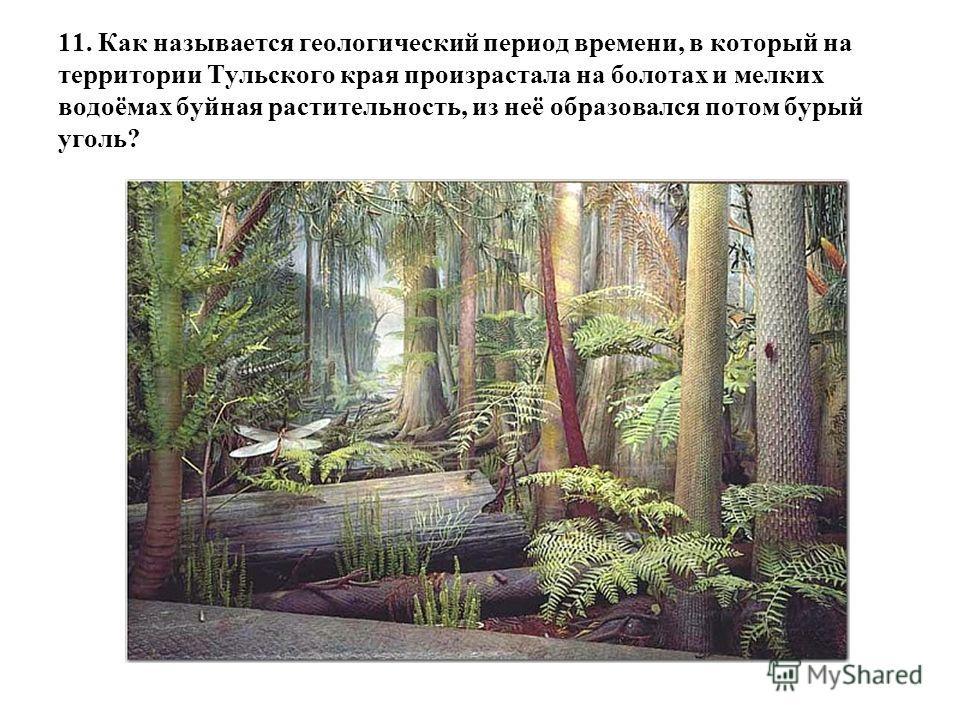 11. Как называется геологический период времени, в который на территории Тульского края произрастала на болотах и мелких водоёмах буйная растительность, из неё образовался потом бурый уголь?