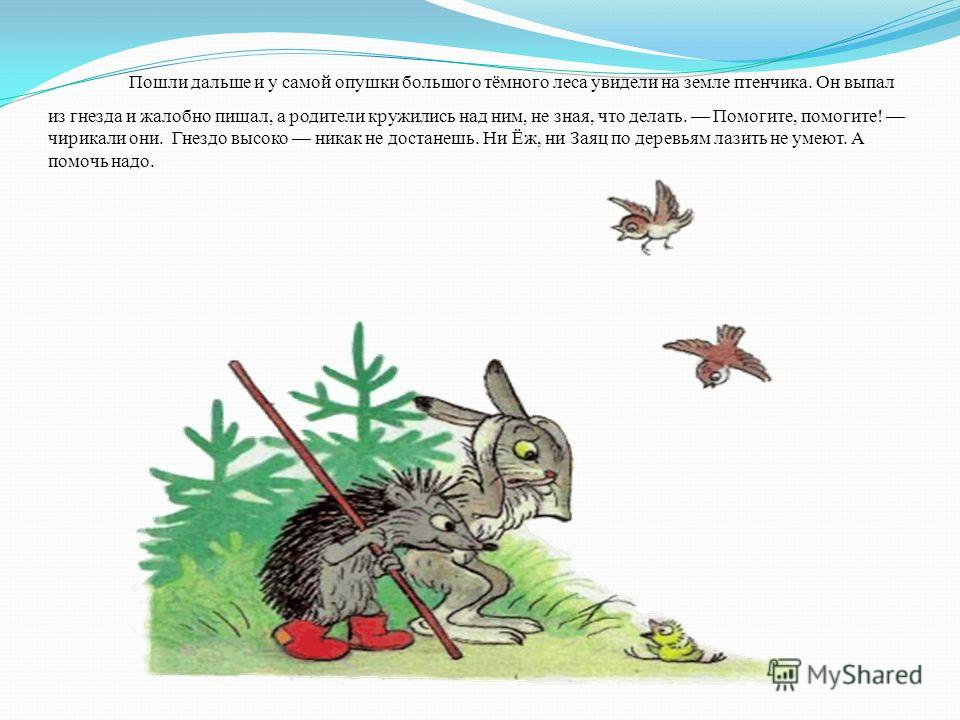 Пошли дальше и у самой опушки большого тёмного леса увидели на земле птенчика. Он выпал из гнезда и жалобно пищал, а родители кружились над ним, не зная, что делать. Помогите, помогите! чирикали они. Гнездо высоко никак не достанешь. Ни Ёж, ни Заяц п