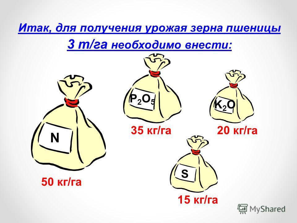 Итак, для получения урожая зерна пшеницы 3 т/га необходимо внести: 50 кг/га N P2O5P2O5 35 кг/га K2OK2O 20 кг/га S 15 кг/га