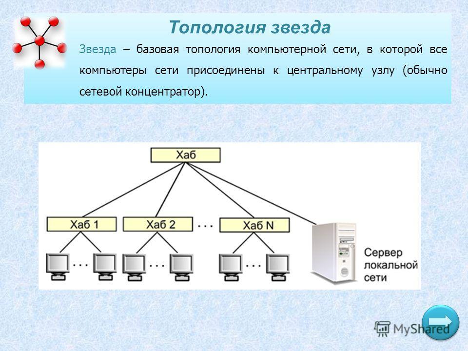 Топология звезда Звезда – базовая топология компьютерной сети, в которой все компьютеры сети присоединены к центральному узлу (обычно сетевой концентратор).