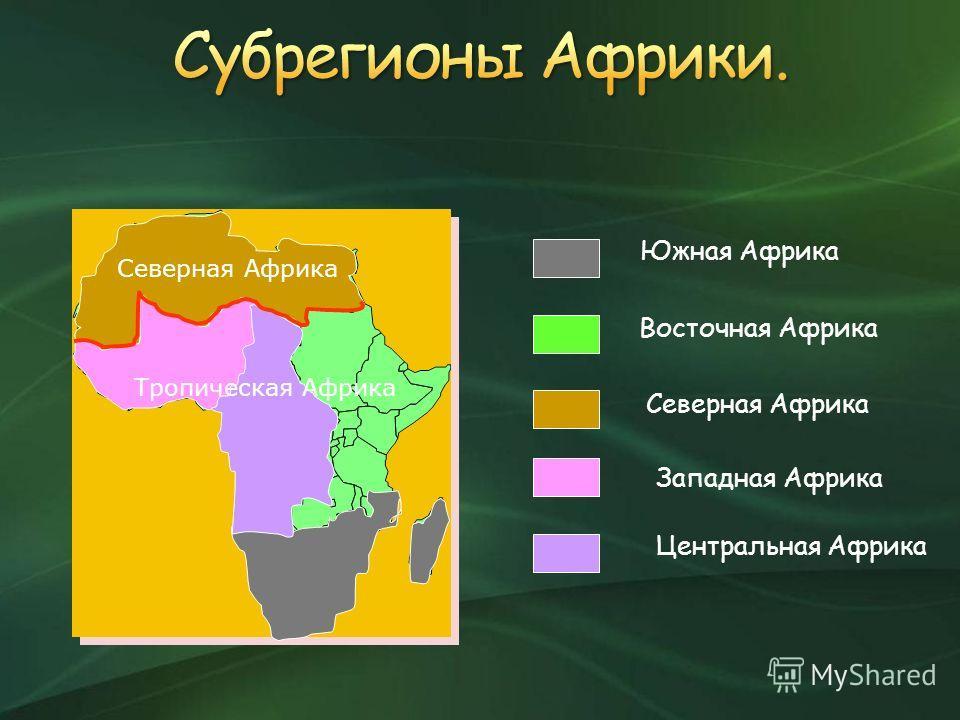 Южная Африка Восточная Африка Северная Африка Западная Африка Центральная Африка Северная Африка Тропическая Африка