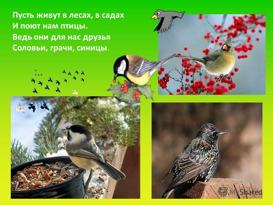 Пусть живут в лесах, в садах И поют нам птицы. Ведь они для нас друзья Соловьи, грачи, синицы.