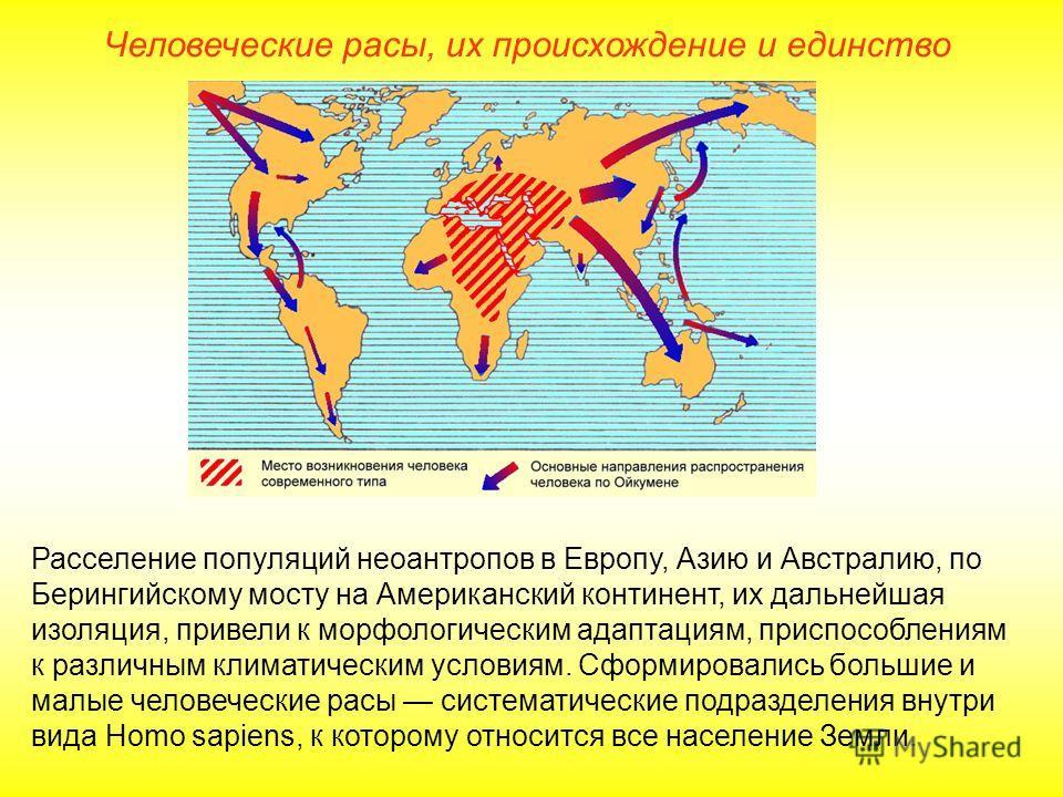 Человеческие расы, их происхождение и единство Расселение популяций неоантропов в Европу, Азию и Австралию, по Берингийскому мосту на Американский континент, их дальнейшая изоляция, привели к морфологическим адаптациям, приспособлениям к различным кл