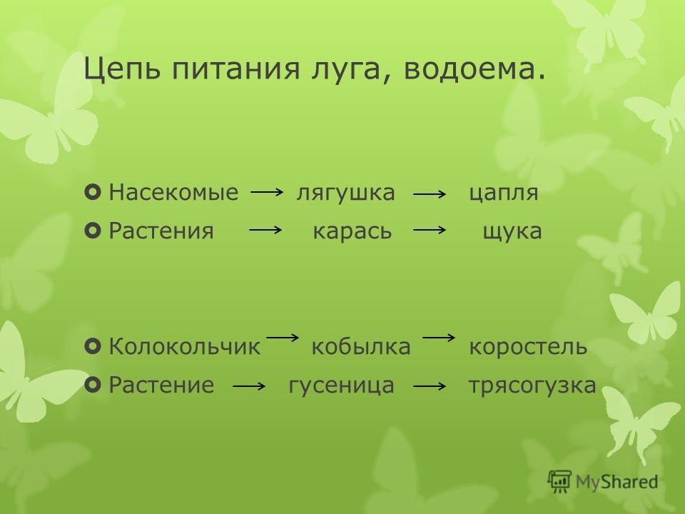 """Презентация на тему: """"Лес"""