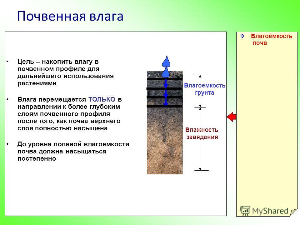 Почвенная влага Влагоёмкость почв Влажность завядания Цель – накопить влагу в почвенном профиле для дальнейшего использования растениями Влага перемещается ТОЛЬКО в направлении к более глубоким слоям почвенного профиля после того, как почва верхнего