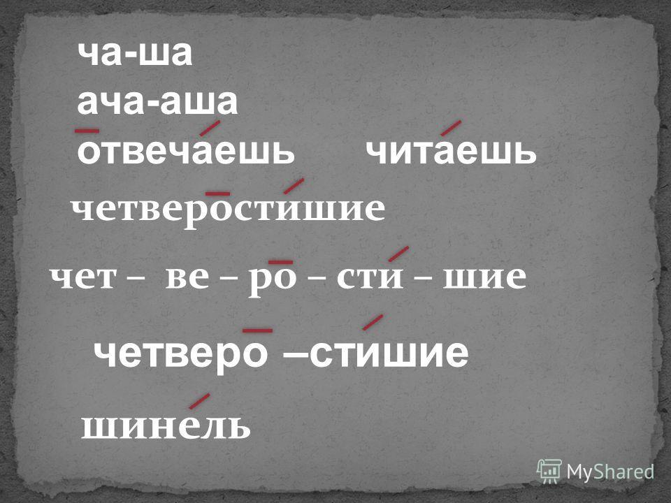 ча-ша ача-аша отвечаешь читаешь четверостишие чет – ве – ро – сти – шие четверо –стишие шинель