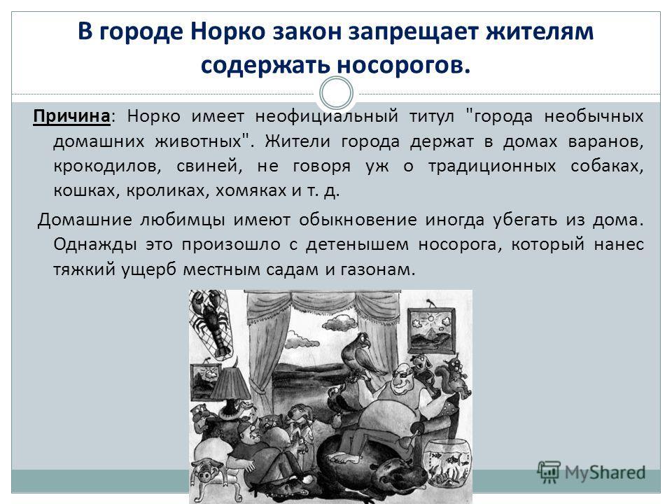 В городе Норко закон запрещает жителям содержать носорогов. Причина: Норко имеет неофициальный титул