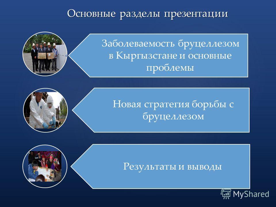 Основные разделы презентации Заболеваемость бруцеллезом в Кыргызстане и основные проблемы Новая стратегия борьбы с бруцеллезом Результаты и выводы