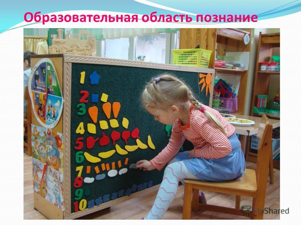 Образовательная область познание