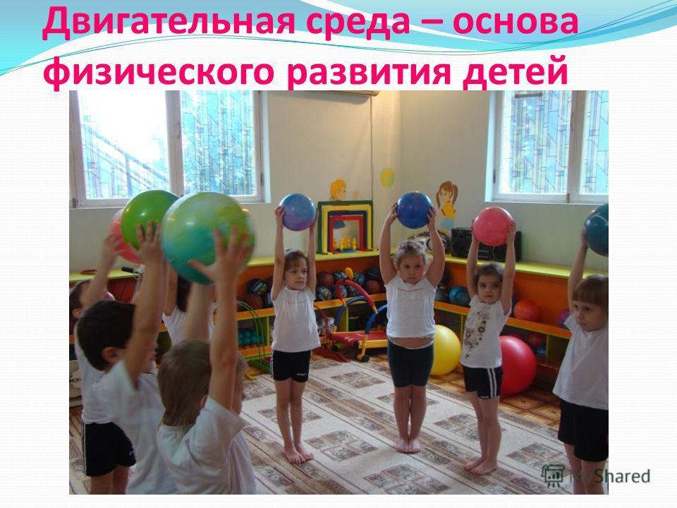 Двигательная среда – основа физического развития детей