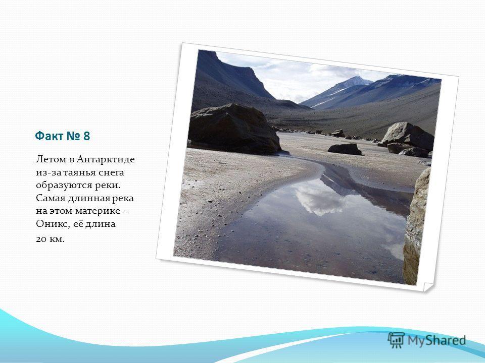 Факт 8 Летом в Антарктиде из-за таянья снега образуются реки. Самая длинная река на этом материке – Оникс, её длина 20 км.