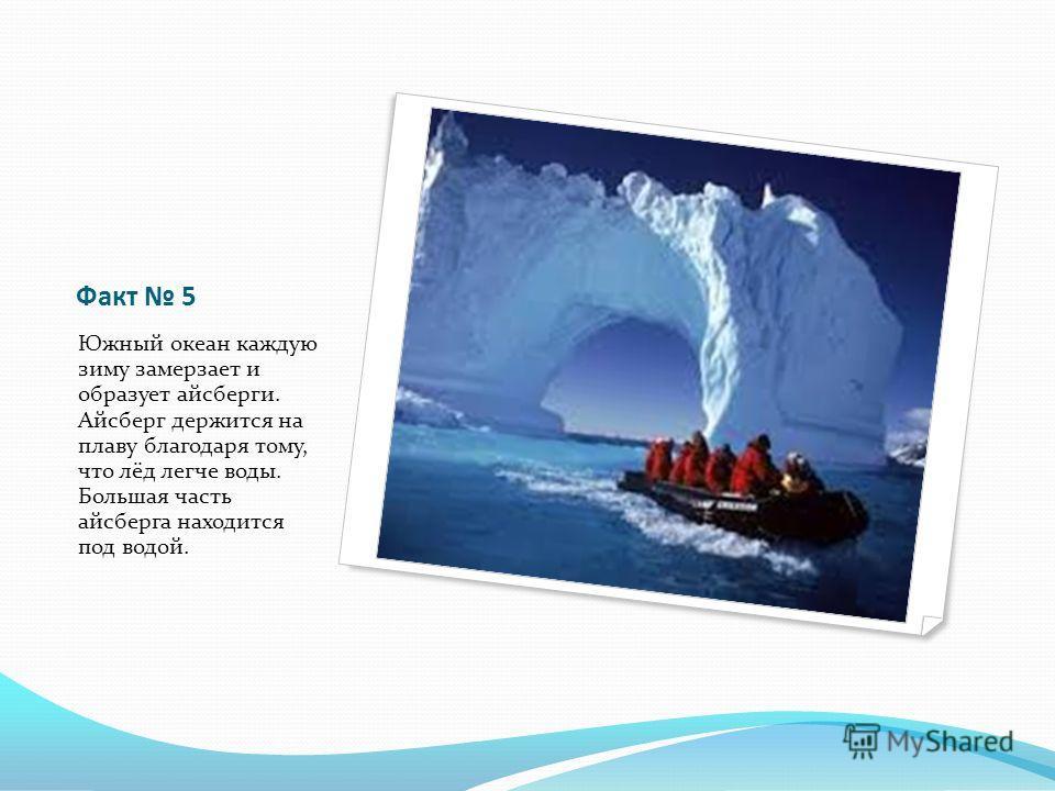 Факт 5 Южный океан каждую зиму замерзает и образует айсберги. Айсберг держится на плаву благодаря тому, что лёд легче воды. Большая часть айсберга находится под водой.