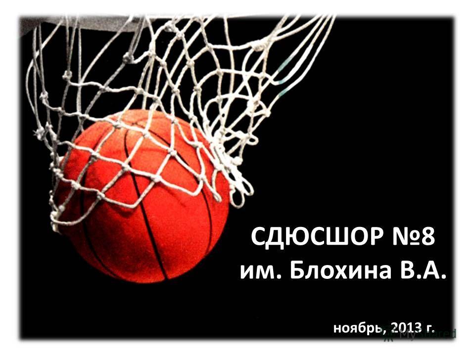 СДЮСШОР 8 им. Блохина В.А. ноябрь, 2013 г.