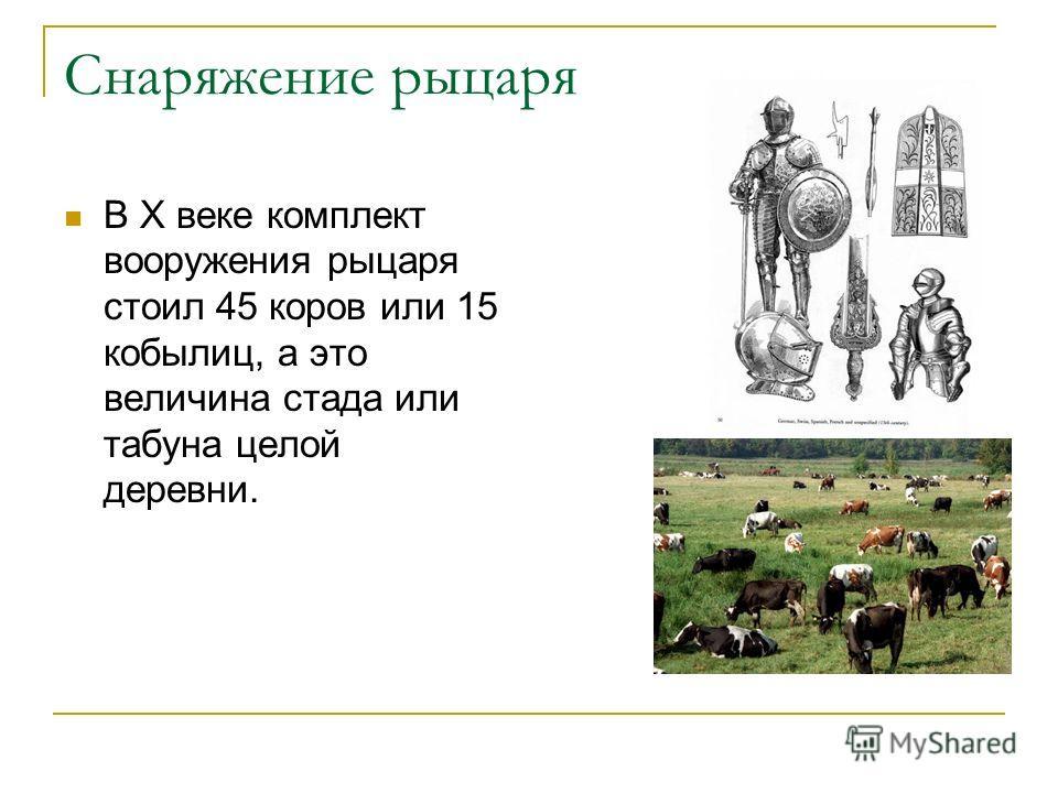 Снаряжение рыцаря В X веке комплект вооружения рыцаря стоил 45 коров или 15 кобылиц, а это величина стада или табуна целой деревни.