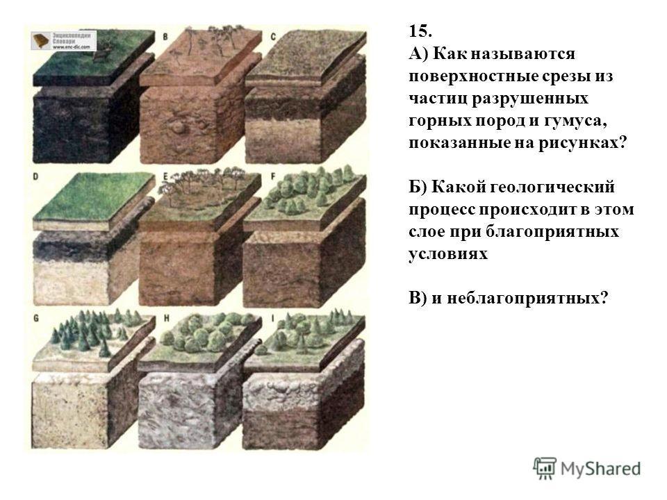 15. А) Как называются поверхностные срезы из частиц разрушенных горных пород и гумуса, показанные на рисунках? Б) Какой геологический процесс происходит в этом слое при благоприятных условиях В) и неблагоприятных?
