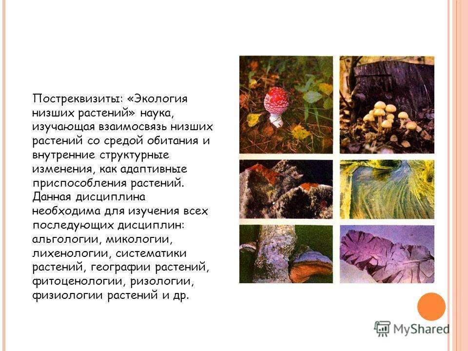 Постреквизиты: «Экология низших растений» наука, изучающая взаимосвязь низших растений со средой обитания и внутренние структурные изменения, как адаптивные приспособления растений. Данная дисциплина необходима для изучения всех последующих дисциплин