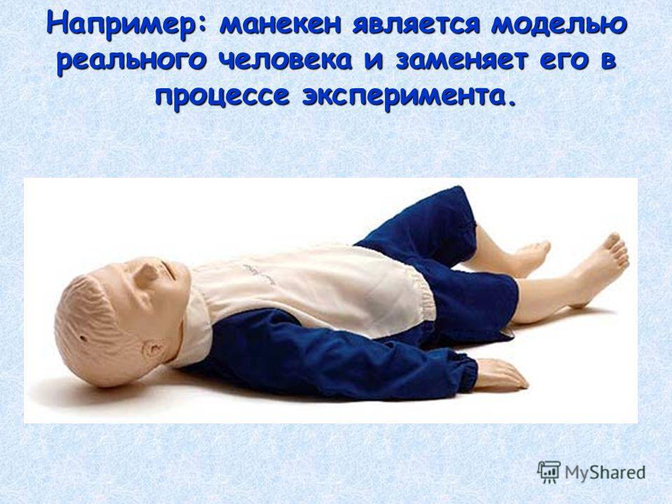 Например: манекен является моделью реального человека и заменяет его в процессе эксперимента.