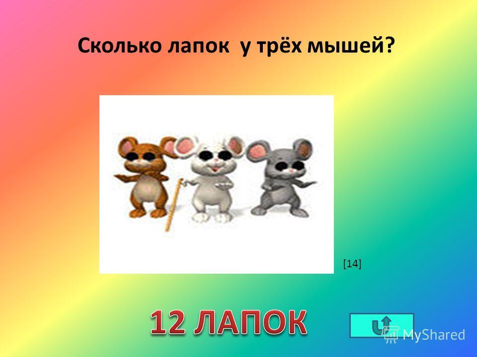 Сколько лапок у трёх мышей? [14]