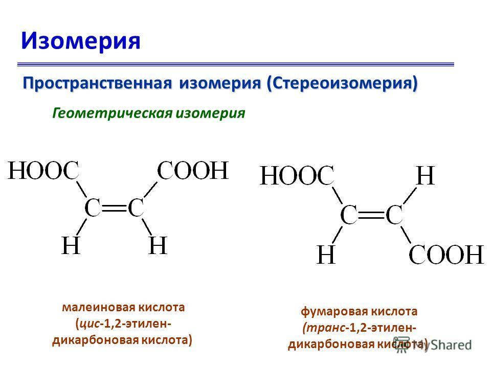Изомерия Пространственная изомерия (Стереоизомерия) Геометрическая изомерия малеиновая кислота (цис-1,2-этилен- дикарбоновая кислота) фумаровая кислота (транс-1,2-этилен- дикарбоновая кислота)