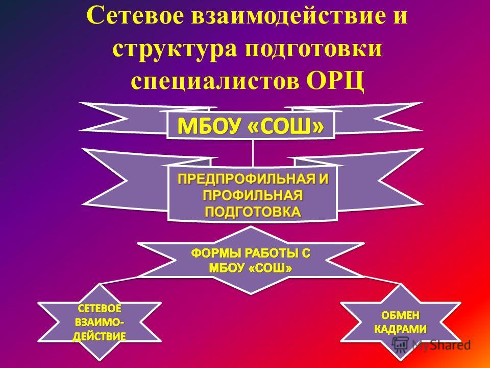 Сетевое взаимодействие и структура подготовки специалистов ОРЦ