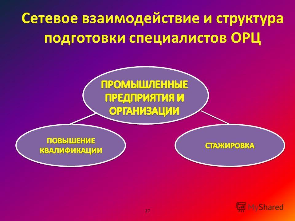 Сетевое взаимодействие и структура подготовки специалистов ОРЦ 17