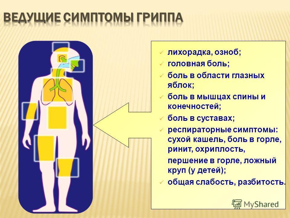 лихорадка, озноб; головная боль; боль в области глазных яблок; боль в мышцах спины и конечностей; боль в суставах; респираторные симптомы: сухой кашель, боль в горле, ринит, охриплость, першение в горле, ложный круп (у детей); общая слабость, разбито